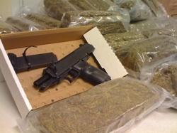 marijuana prohibition causes crime